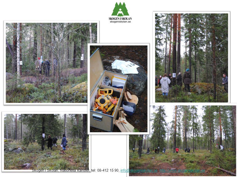 Här har vi vår skolskogslåda som är ett stöd och en hjälp för alla er som önskar förlägga lärande utomhus!