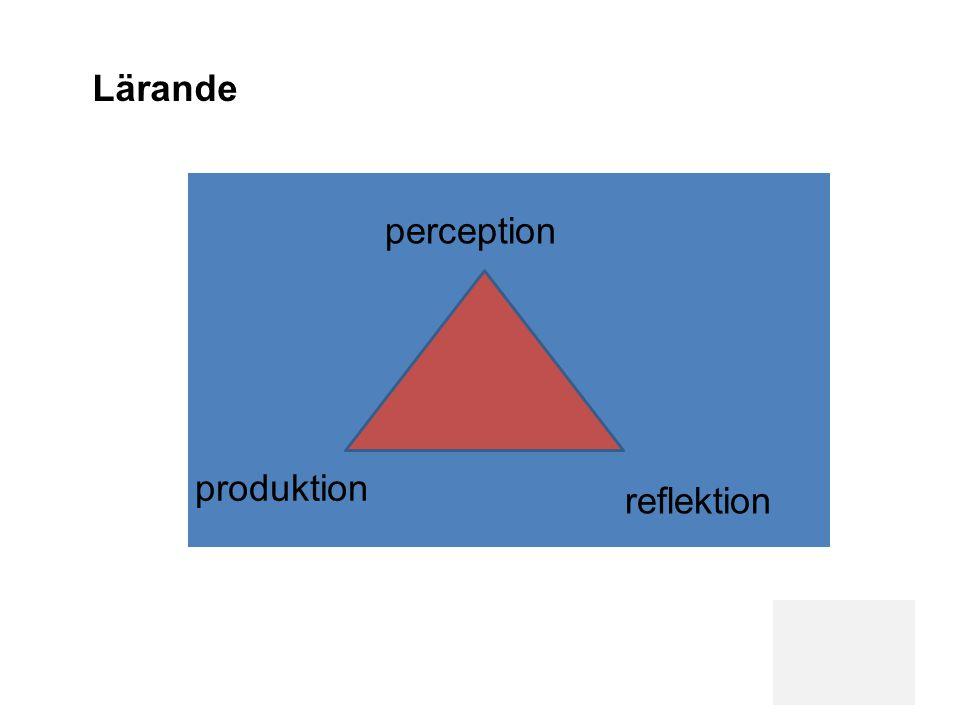 Lärande perception produktion reflektion