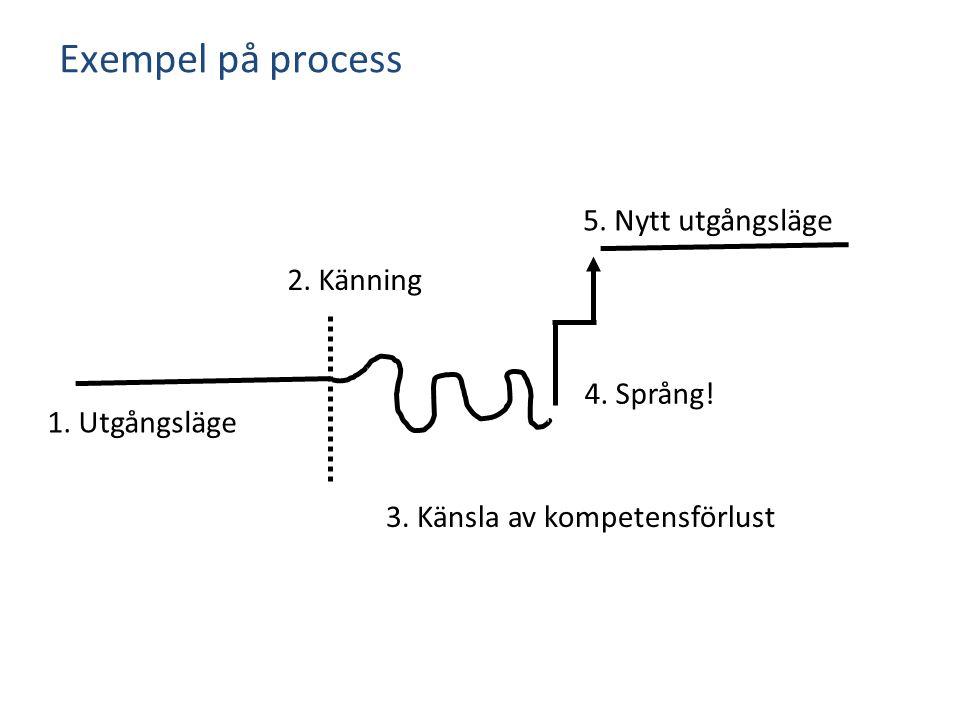 Exempel på process 5. Nytt utgångsläge 2. Känning 4. Språng!