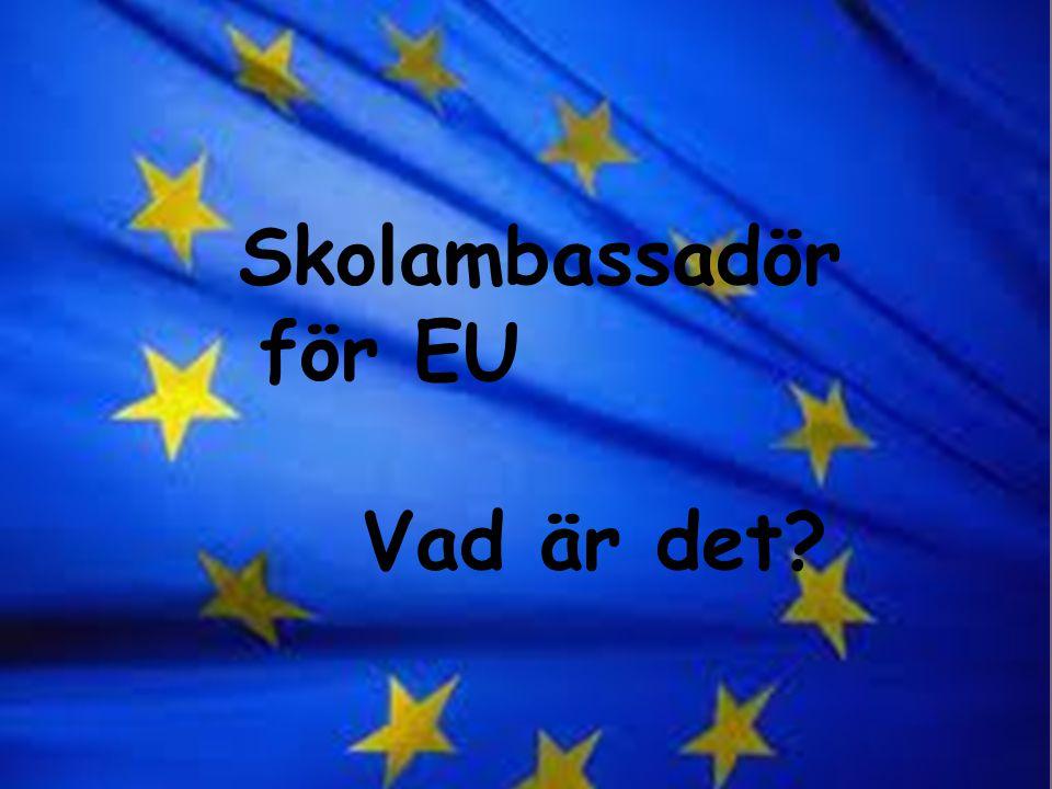 Skolambassadör för EU Skolambassadör för EU Vad är det