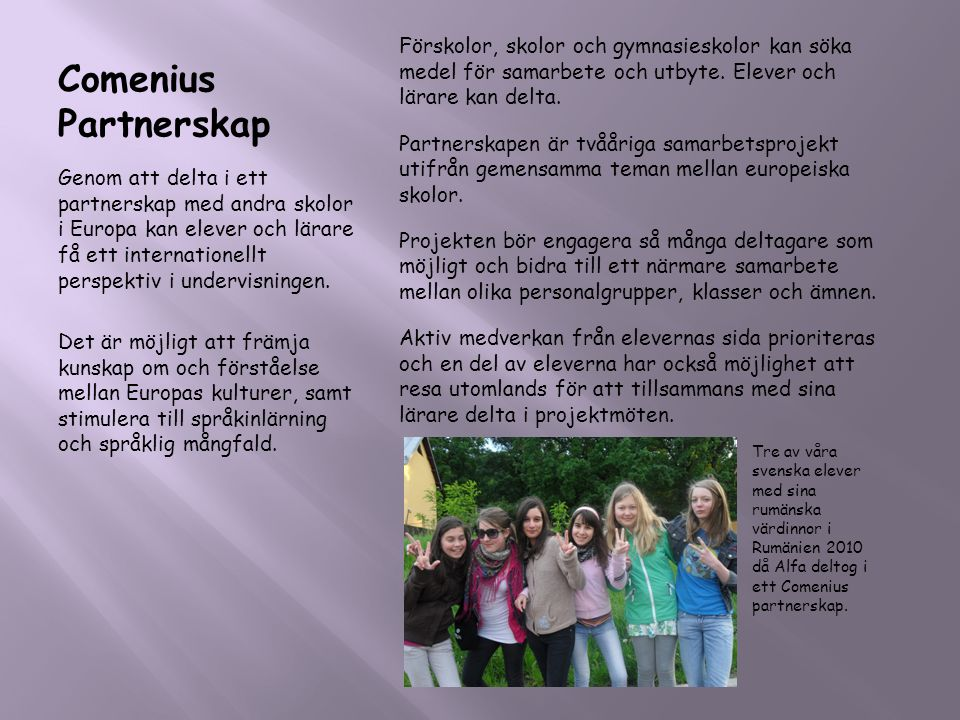 Comenius Partnerskap