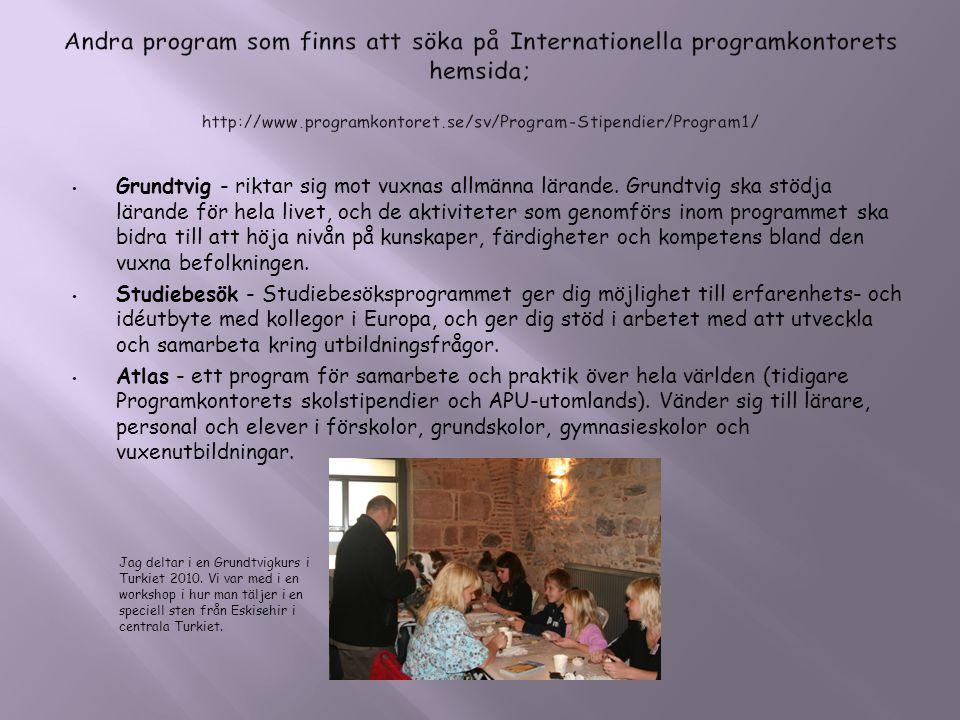 Andra program som finns att söka på Internationella programkontorets hemsida; http://www.programkontoret.se/sv/Program-Stipendier/Program1/