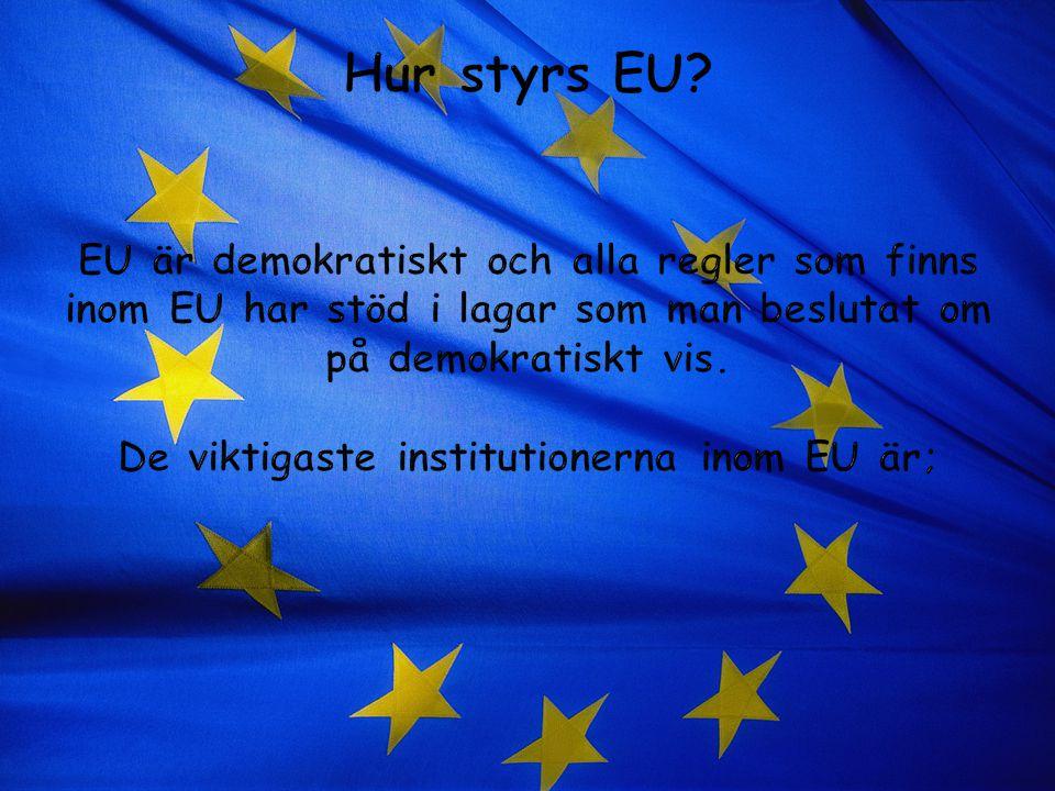 Hur styrs EU.