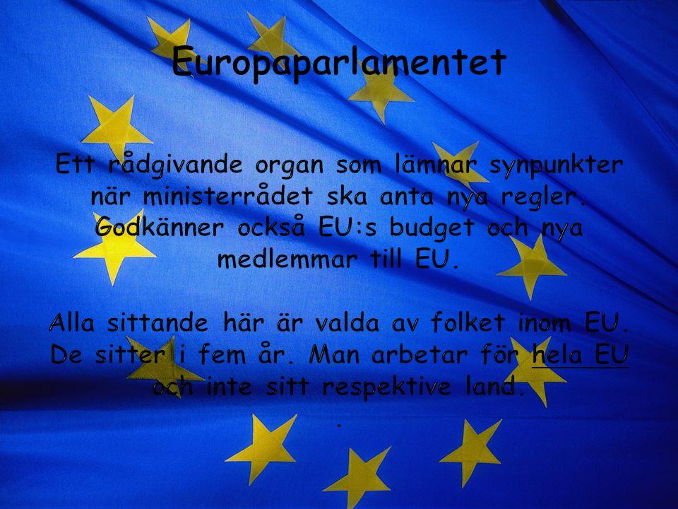 Europaparlamentet Ett rådgivande organ som lämnar synpunkter när ministerrådet ska anta nya regler.