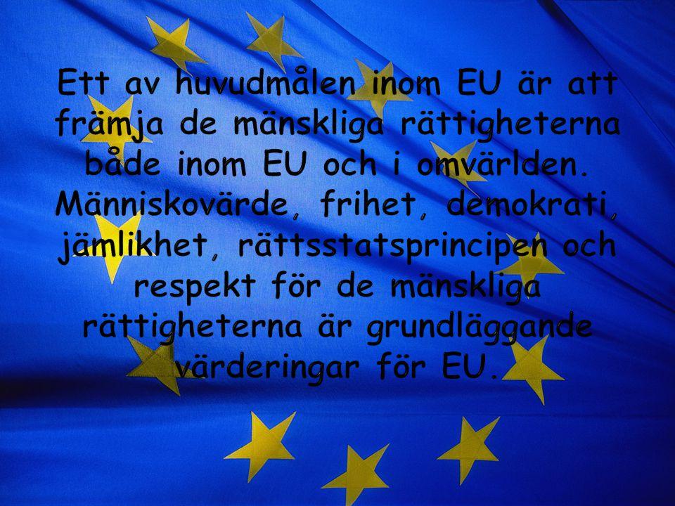Ett av huvudmålen inom EU är att främja de mänskliga rättigheterna både inom EU och i omvärlden.