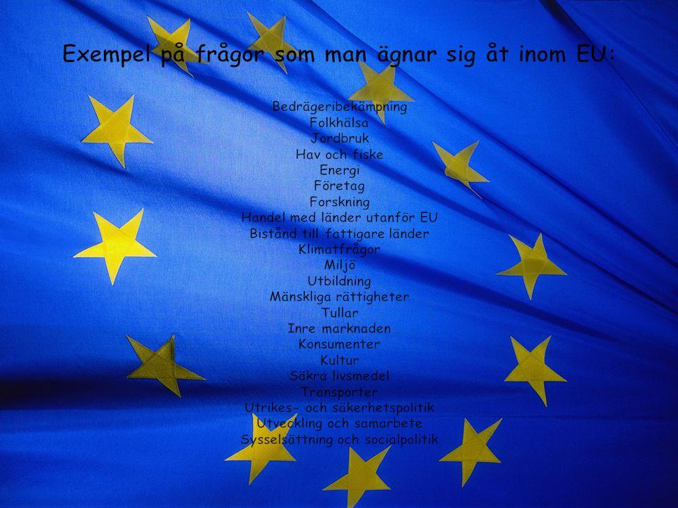 Exempel på frågor som man ägnar sig åt inom EU: Bedrägeribekämpning Folkhälsa Jordbruk Hav och fiske Energi Företag Forskning Handel med länder utanför EU Bistånd till fattigare länder Klimatfrågor Miljö Utbildning Mänskliga rättigheter Tullar Inre marknaden Konsumenter Kultur Säkra livsmedel Transporter Utrikes- och säkerhetspolitik Utveckling och samarbete Sysselsättning och socialpolitik