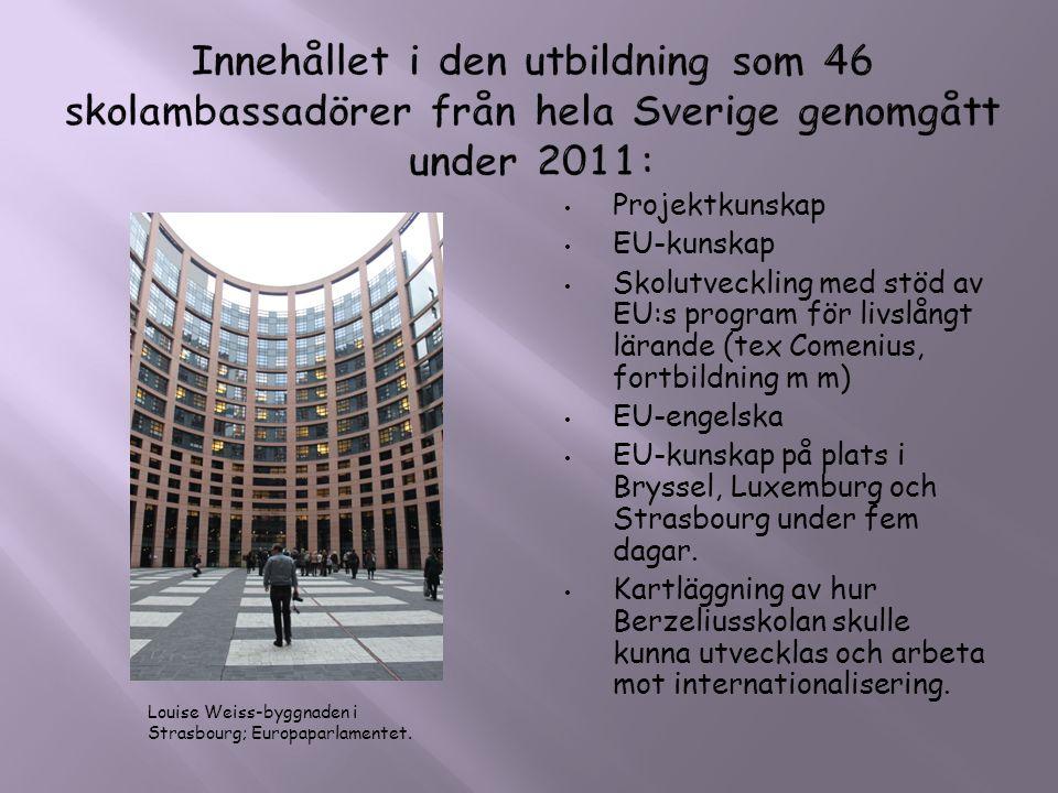 Innehållet i den utbildning som 46 skolambassadörer från hela Sverige genomgått under 2011: