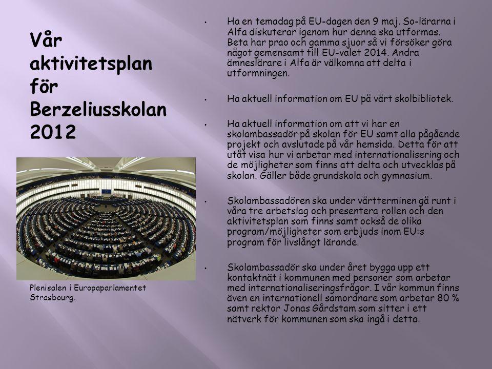 Vår aktivitetsplan för Berzeliusskolan 2012