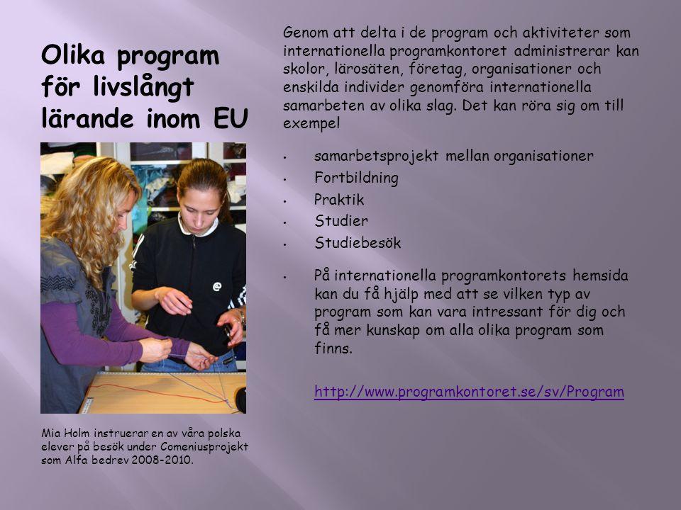 Olika program för livslångt lärande inom EU