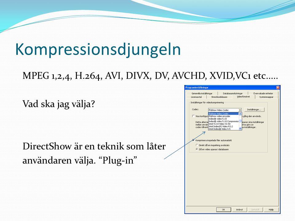 Kompressionsdjungeln