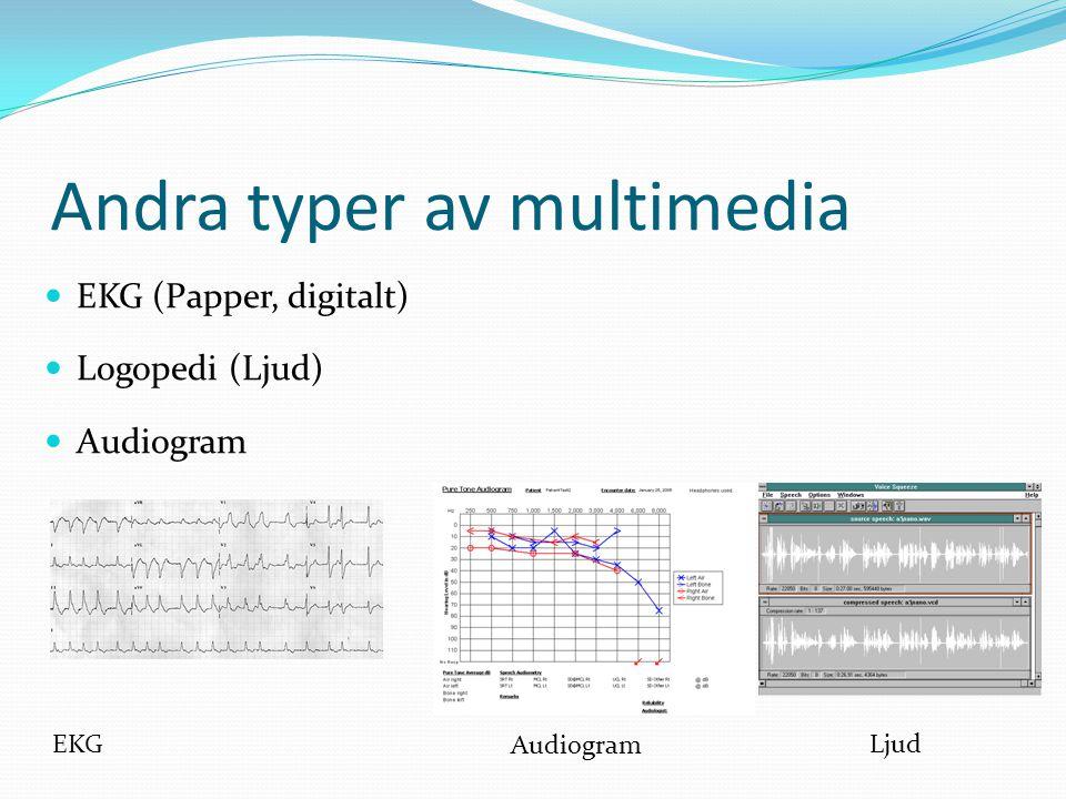 Andra typer av multimedia