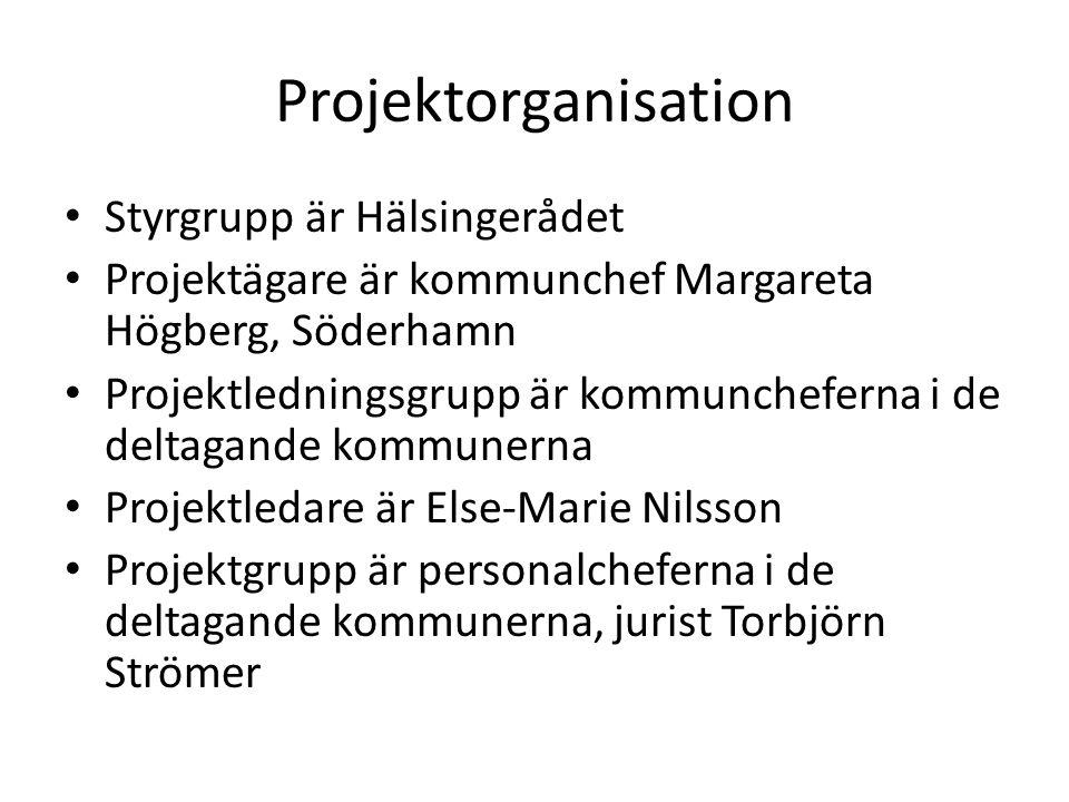 Projektorganisation Styrgrupp är Hälsingerådet