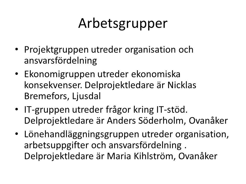 Arbetsgrupper Projektgruppen utreder organisation och ansvarsfördelning.