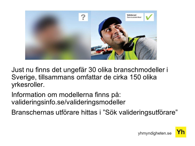 Just nu finns det ungefär 30 olika branschmodeller i Sverige, tillsammans omfattar de cirka 150 olika yrkesroller.