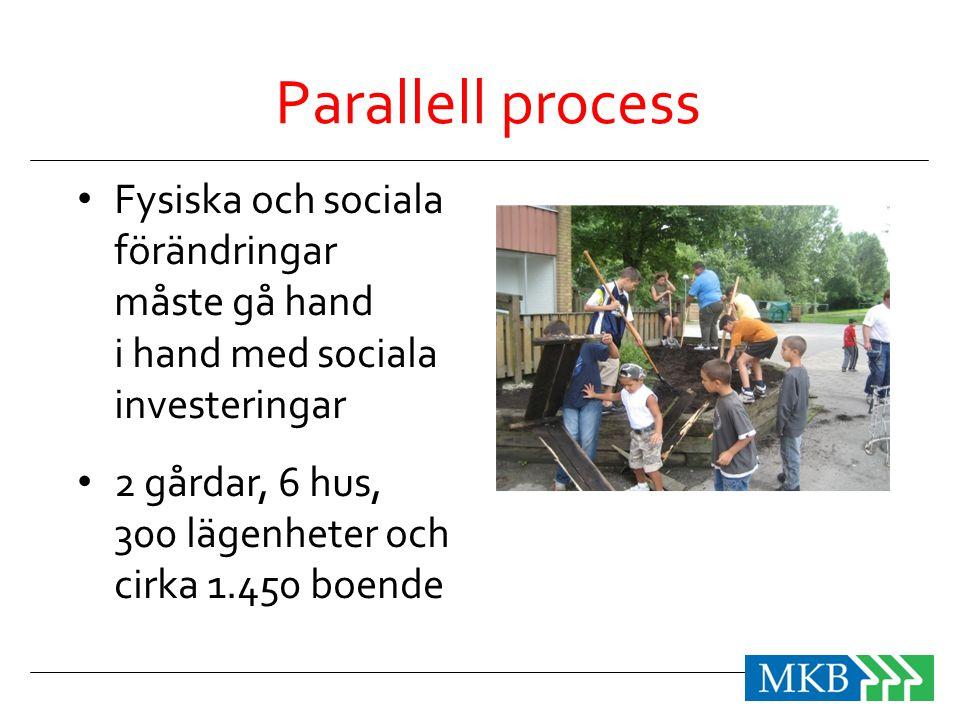 Parallell process Fysiska och sociala förändringar måste gå hand i hand med sociala investeringar.