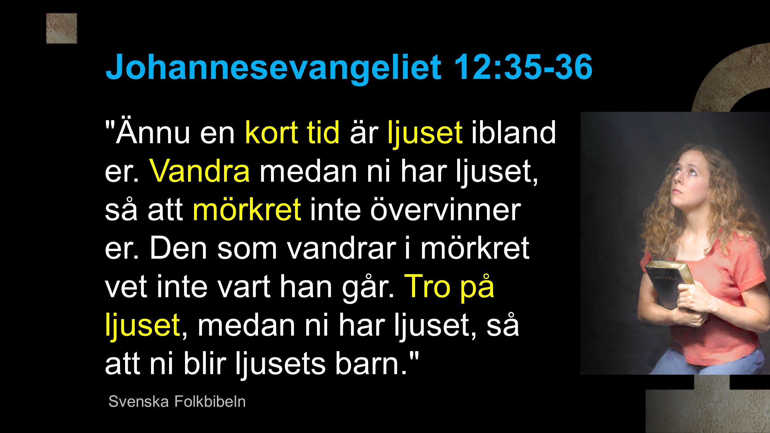 Johannesevangeliet 12:35-36