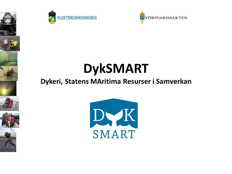 DykSMART Dykeri, Statens MAritima Resurser i Samverkan