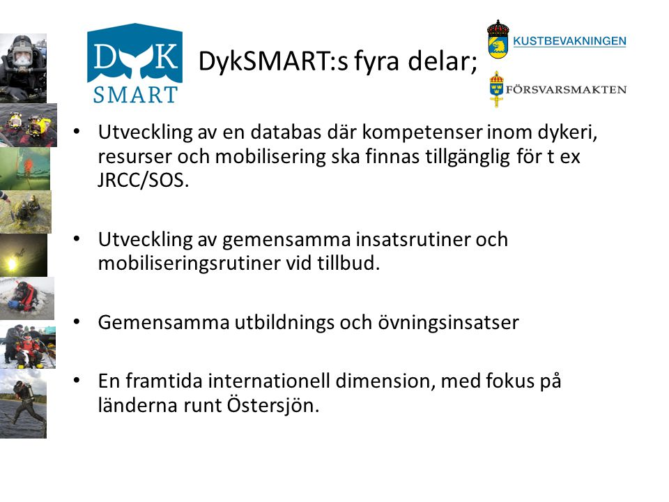 DykSMART:s fyra delar;