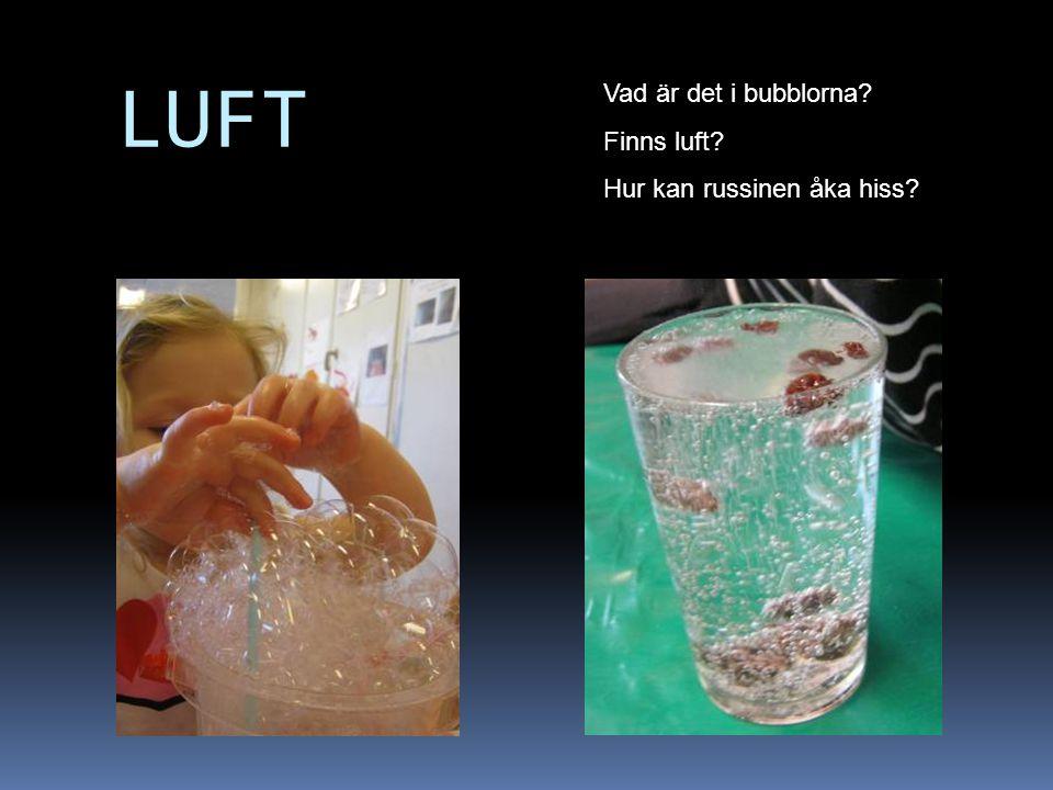 LUFT Vad är det i bubblorna Finns luft Hur kan russinen åka hiss