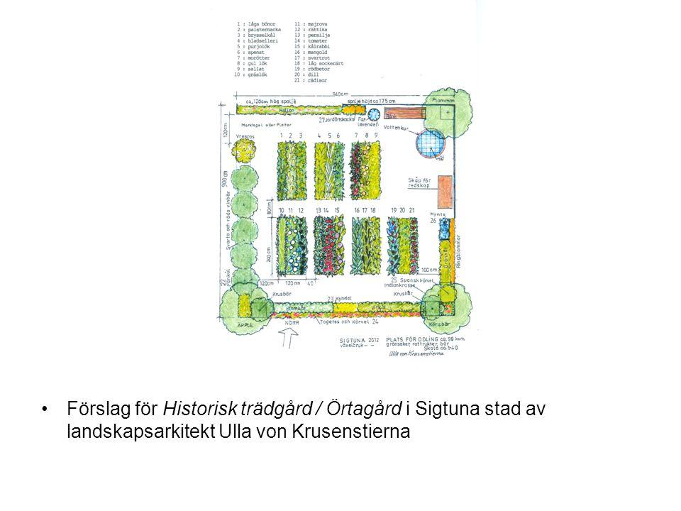 Förslag för Historisk trädgård / Örtagård i Sigtuna stad av landskapsarkitekt Ulla von Krusenstierna
