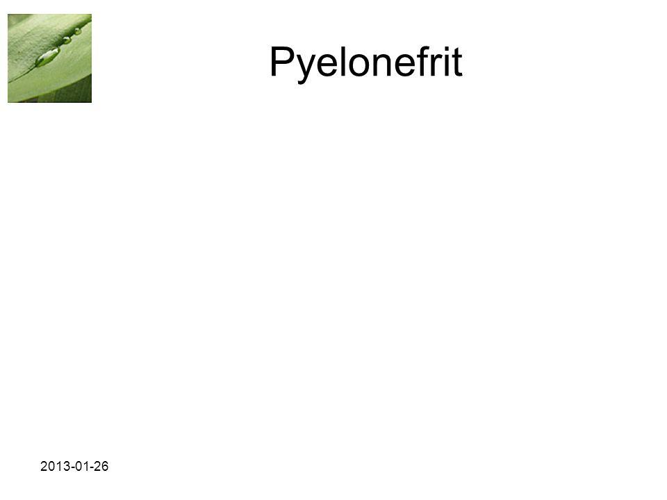Pyelonefrit 2013-01-26