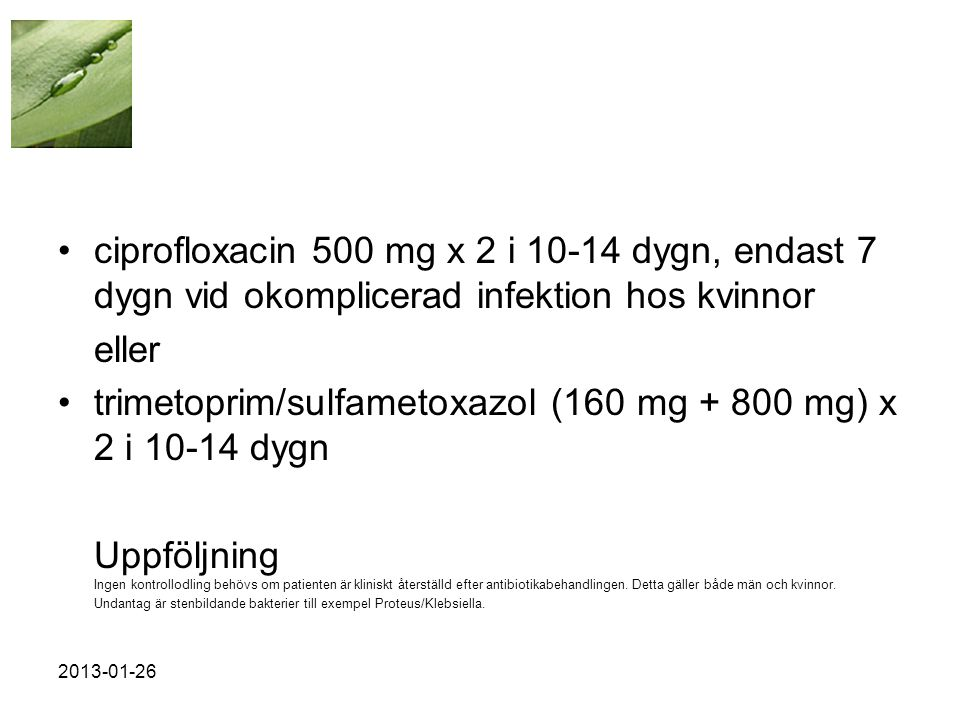 trimetoprim/sulfametoxazol (160 mg + 800 mg) x 2 i 10-14 dygn