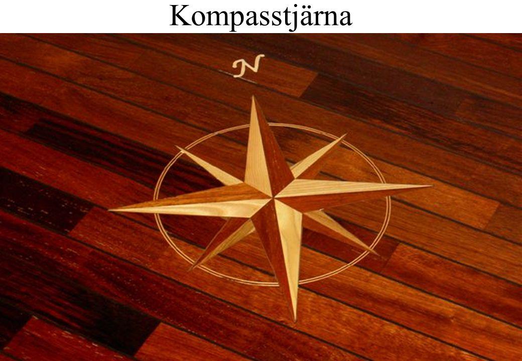 Kompasstjärna