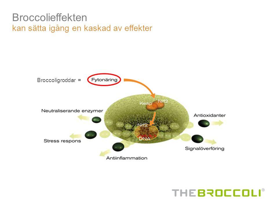 Broccolieffekten kan sätta igång en kaskad av effekter