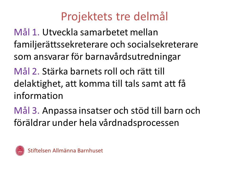 Projektets tre delmål