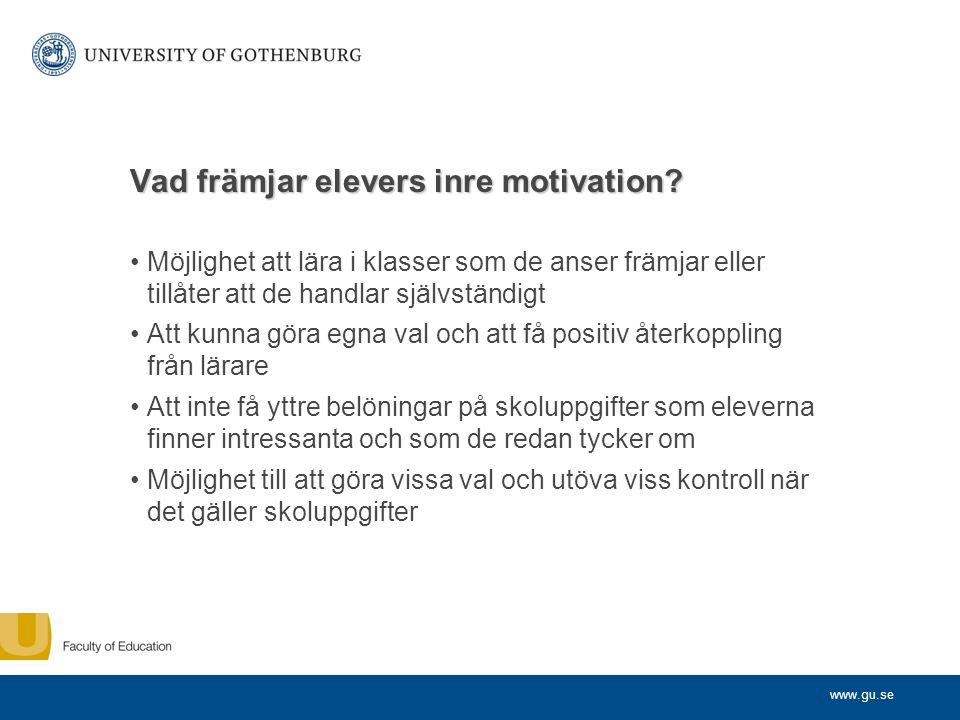 Vad främjar elevers inre motivation