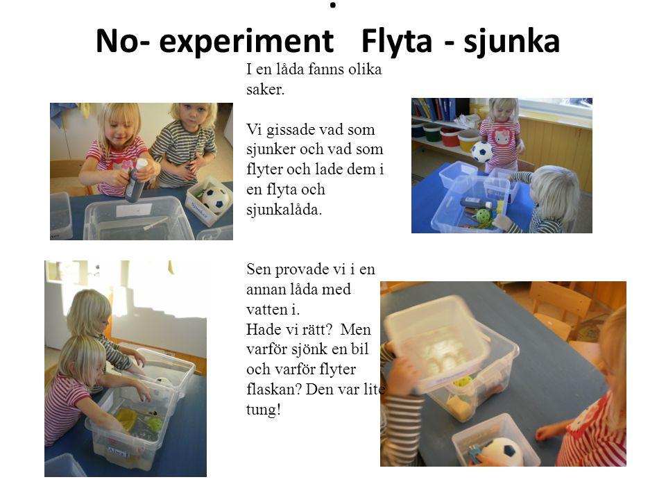 . No- experiment Flyta - sjunka