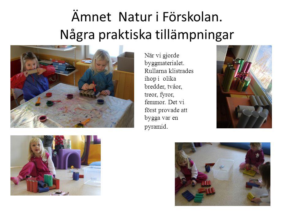 Ämnet Natur i Förskolan. Några praktiska tillämpningar