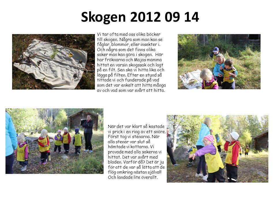 Skogen 2012 09 14