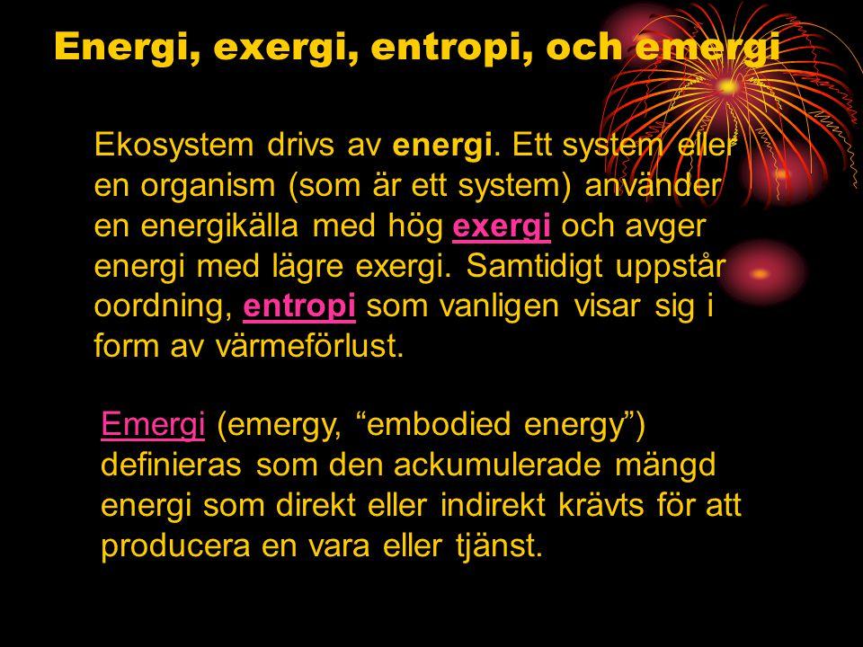 Energi, exergi, entropi, och emergi