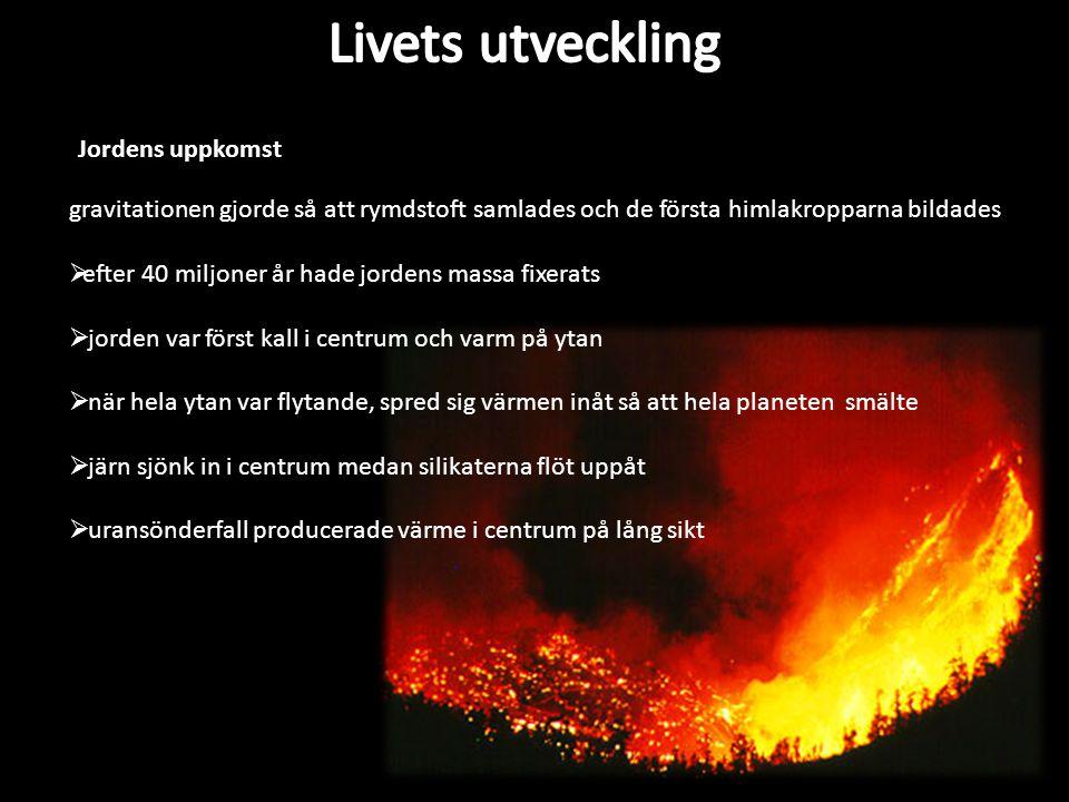 Livets utveckling Jordens uppkomst