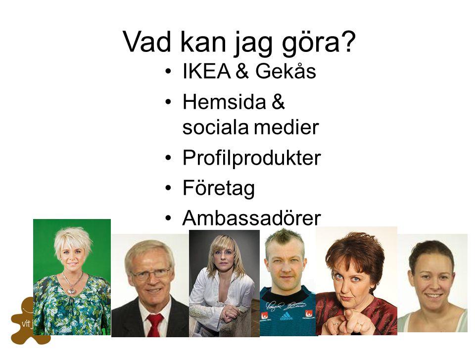 Vad kan jag göra IKEA & Gekås Hemsida & sociala medier