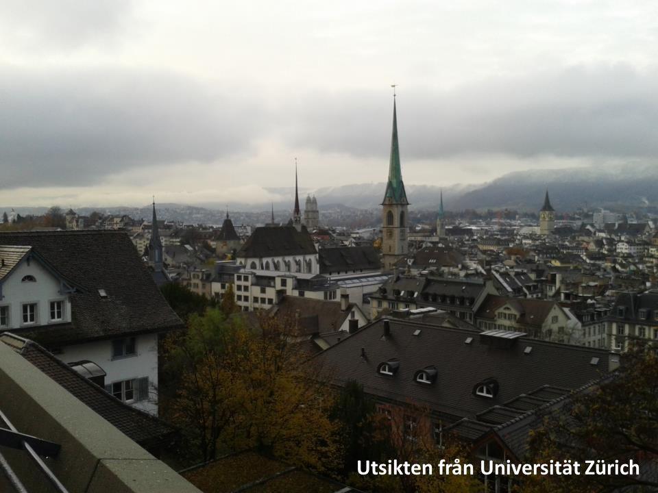 Utsikten från Universität Zürich