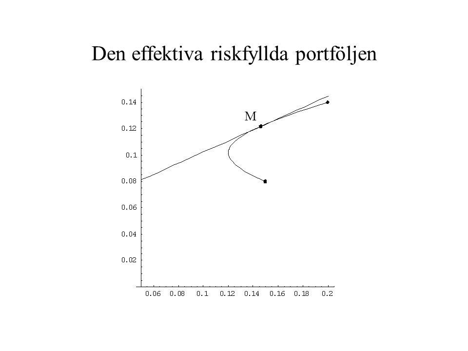 Den effektiva riskfyllda portföljen