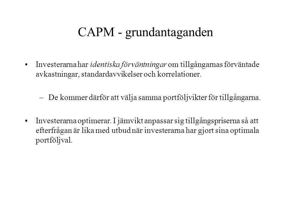 CAPM - grundantaganden