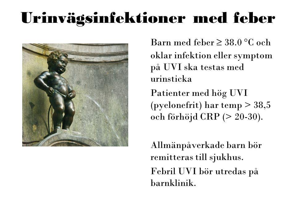 Urinvägsinfektioner med feber