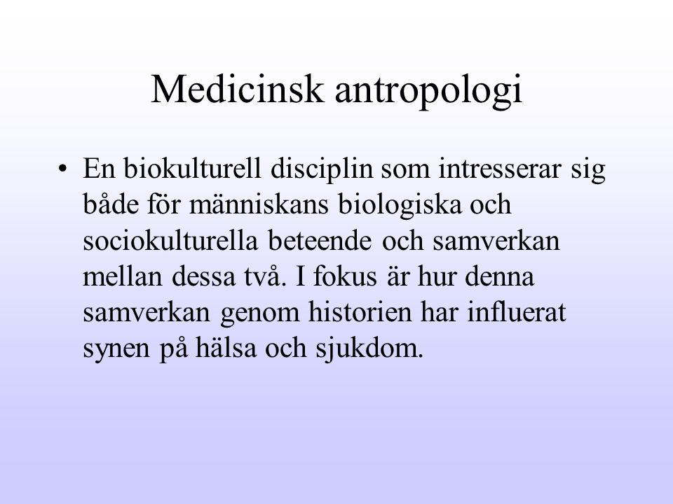 Medicinsk antropologi
