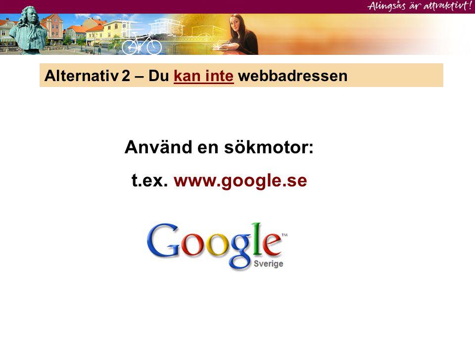 Använd en sökmotor: t.ex. www.google.se
