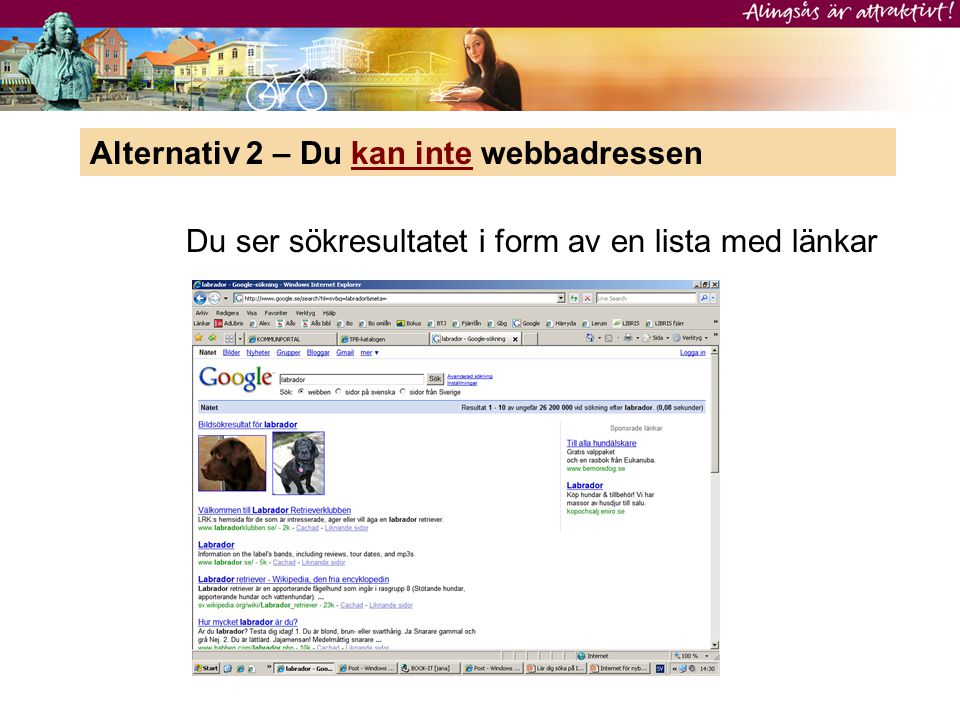 Alternativ 2 – Du kan inte webbadressen