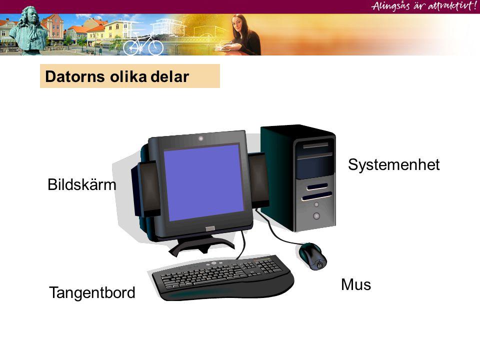 Datorns olika delar Systemenhet Bildskärm Mus Tangentbord