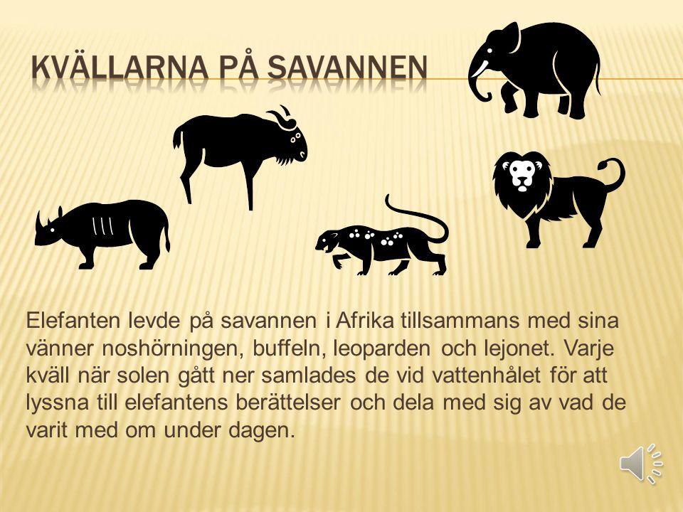 Elefanten levde på savannen i Afrika tillsammans med sina vänner noshörningen, buffeln, leoparden och lejonet.