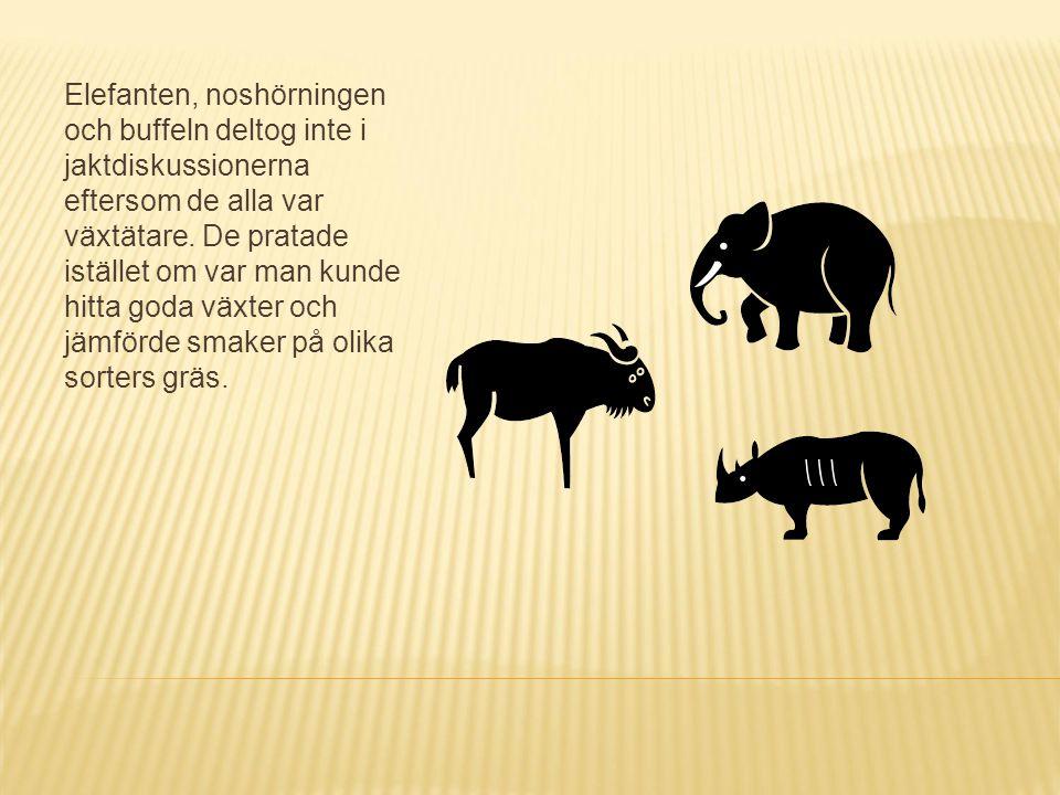 Elefanten, noshörningen och buffeln deltog inte i jaktdiskussionerna eftersom de alla var växtätare.