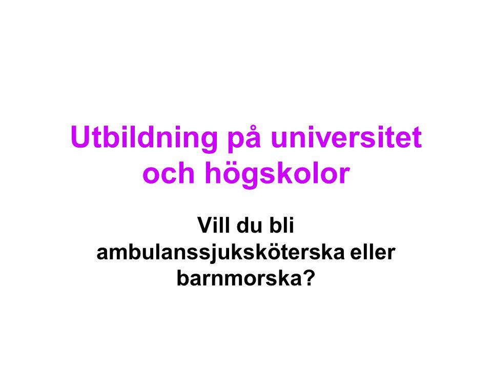 Utbildning på universitet och högskolor