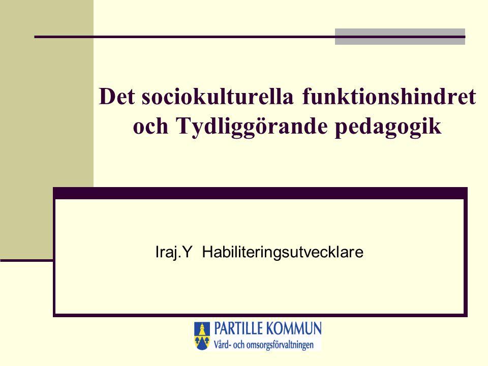 Det sociokulturella funktionshindret och Tydliggörande pedagogik