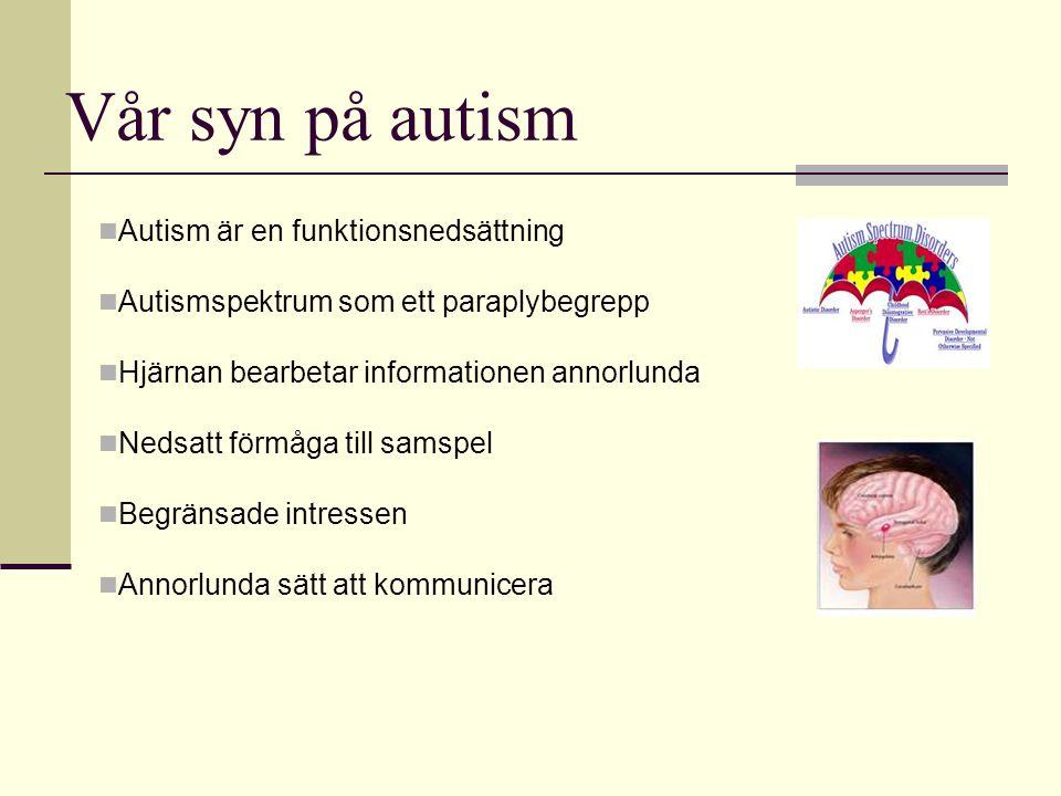Vår syn på autism Autism är en funktionsnedsättning