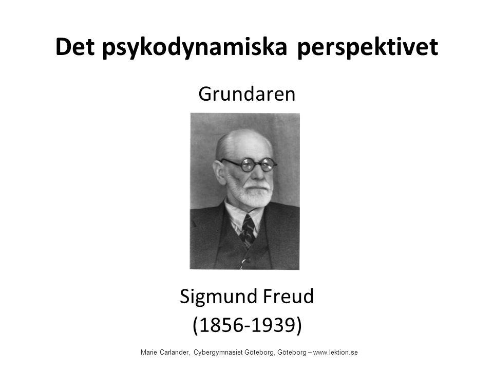 Det psykodynamiska perspektivet